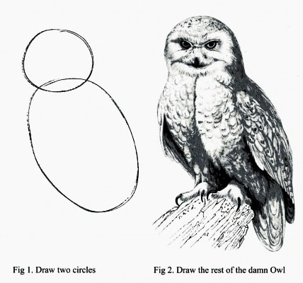 Funny, two step, owl drawing instruction.